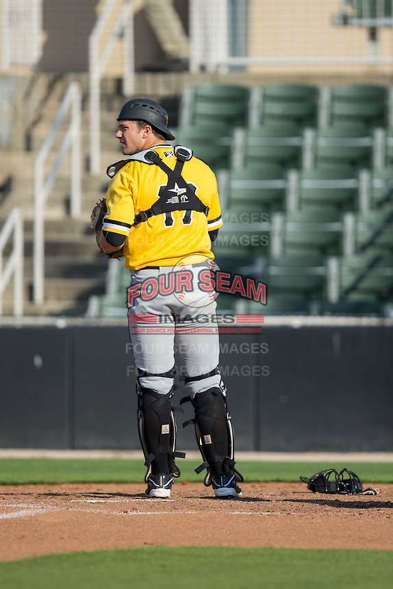 West Virginia Power catcher Taylor Gushue (17) on defense against the Kannapolis Intimidators at CMC-Northeast Stadium on April 21, 2015 in Kannapolis, North Carolina.  The Power defeated the Intimidators 5-3 in game one of a double-header.  (Brian Westerholt/Four Seam Images)