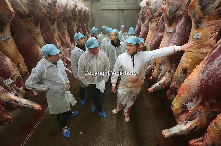 Foto: VidiPhoto<br /> <br /> DODEWAARD - Cursisten Vleesvee van het agrarische Groenhorstcollege in Barneveld en de HAS Dronten krijgen woensdag een exclusieve rondleiding bij Holland Vlees Service BV, beter bekend als Van Hattem Vlees BV. Na de ruzie met de NVWA in 2014 draait het bedrijf inmiddels weer goed, zij het nog steeds niet op het niveau van voor het gedwongen faillissement . Inmiddels is het slachthuis gemoderniseerd en worden er tussen 500 en 700 luxe runderen geslacht. Van Hattem is daarmee de grootste verwerker in dit segment. Volgens cursusleider Johan den Hartog is vleesvee nog steeds onderbelicht in het agrarisch onderwijs, hoewel Nederland op dit gebied tot de wereldtop behoort. De nu afgestudeerde cursisten zijn volgens hem de toekomstige topfokkers van Nederland. Omdat er twee grote exportmarkten zitten aan te komen voor Nederlands vlees -Noord-Amerika en China- wil het Groenhorstcollege de Cursus Vleesvee meer stimuleren en onder de aandacht brengen bij leerlingen en vleesveehouders.