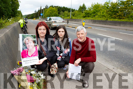 Suzanne Dennehy with her daughter Ailish Dennehy and Donal O'Riordan who are appealing for the Killarney bypass to be made safer after the death of her sister last Wednesday on the bypass