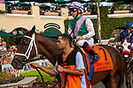 DEL MAR, CA  AUGUST 31:#7 Juliet Foxtrot, ridden by Drayden Van Dyke, in the paddock of the John C. Mabee Stakes (Grade ll) on August 31, 2019 at Del Mar Thoroughbred Club in Del Mar, CA. ( Photo by Casey Phillips/Eclipse Sportswire/CSM)