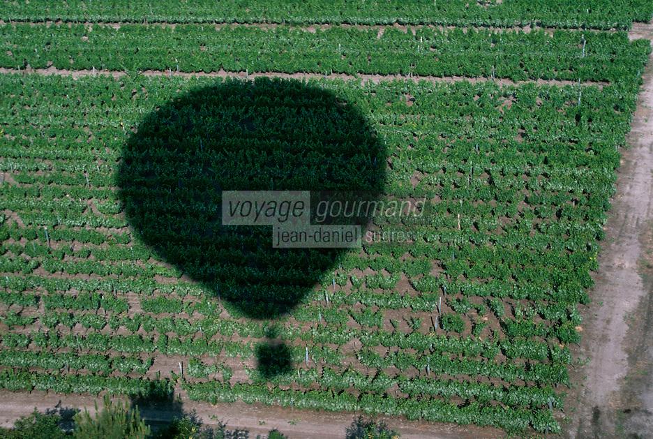 Europe/France/Aquitaine/33/Gironde/Sauternais/Sauternes: Vignes du chateau Guiraud (Vue aérienne) - Ombre de montgolfière sur le vignoble de Sauternes