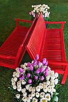 Pots of tulip flowers and bench. Wooden Shoe Tulip Farm. Oregon