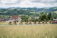 Team Mitchelton-Scott driving the peloton in service of their teammate & yellow jersey / GC leader Adam Yates (GBR/Mitchelton-Scott)<br /> <br /> Stage 7: Saint-Genix-les-Villages to Pipay  (133km)<br /> 71st Critérium du Dauphiné 2019 (2.UWT)<br /> <br /> ©kramon