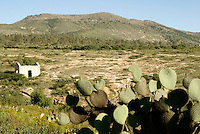 Ruined mining building and arid landscape in the 19th century mining town of Mineral de Pozos, Guanajuato, Mexico.