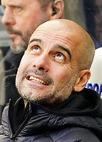 30th November 2019; St James Park, Newcastle, Tyne and Wear, England; English Premier League Football, Newcastle United versus Manchester City; Manchester City manager Pep Guardiola looks up to the large screen - Strictly Editorial Use Only. No use with unauthorized audio, video, data, fixture lists, club/league logos or 'live' services. Online in-match use limited to 120 images, no video emulation. No use in betting, games or single club/league/player publications