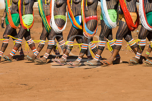 Pará State, Brazil. Aldeia Kokraimoro (Kayapo); girls in full body paint wearing beads and brightly coloured Lycra shorts and flipflops dancing during the Festa de Jabuti (land tortoise festival).