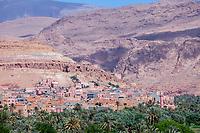 Tineghir Oasis, Morocco.