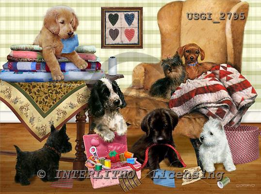 GIORDANO, CUTE ANIMALS, LUSTIGE TIERE, ANIMALITOS DIVERTIDOS, paintings+++++,USGI2795,#AC#,dogs,puppies playing