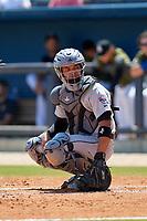 Jacksonville Jumbo Shrimp catcher Rodrigo Vigil (6) during a game against the Biloxi Shuckers on May 6, 2018 at MGM Park in Biloxi, Mississippi.  Biloxi defeated Jacksonville 6-5.  (Mike Janes/Four Seam Images)