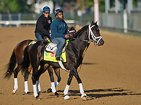 Revoluntionary, trained by Todd Pletcher, during morning workouts for the Kentucky Derby at Churchill Downs in Louisville, Kentucky on April 30, 2013.