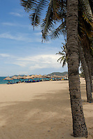 Palm trees line the beach in Nha Trang Vietnam