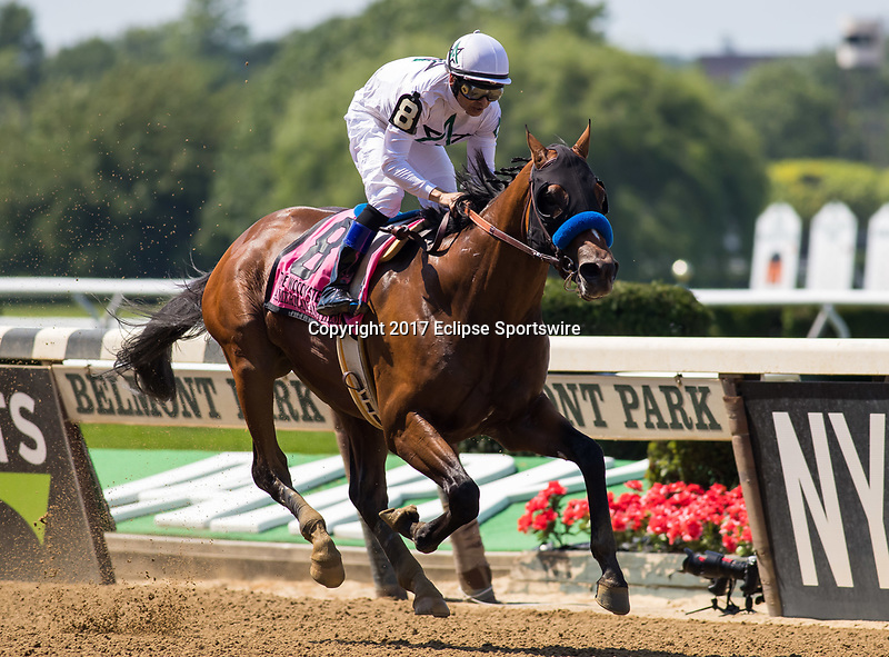 ELMONT, NY - JUNE 10: American Anthem #8, ridden by Mike Smith, wins the Woody Stephens Stakes on Belmont Stakes Day at Belmont Park on June 10, 2017 in Elmont, New York (Photo by Jesse Caris/Eclipse Sportswire/Getty Images)