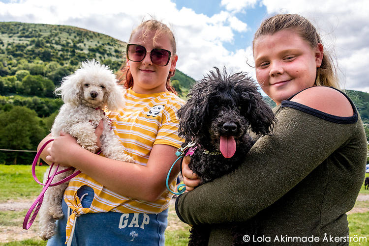 Locals showing off their dogs in the companion dog show