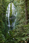 Lower Proxy Falls, Willamette National Forest