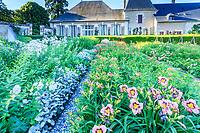 France, Loir-et-Cher (41), Cheverny, château de Cheverny, le jardin bouquetier, campanules laiteuses (Campanula lactea), cinéraire maritime (Cineraria maritima), hémérocalles (Hemerocallis)...