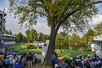A wide view of 17 as Dustin Johnson (USA), Rory McIlroy (NIR), and Patrick Reed (USA) look over their putts during round 4 of the World Golf Championships, Mexico, Club De Golf Chapultepec, Mexico City, Mexico. 2/24/2019.<br /> Picture: Golffile | Ken Murray<br /> <br /> <br /> All photo usage must carry mandatory copyright credit (© Golffile | Ken Murray)