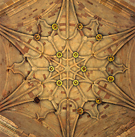 Detail of the symmetrical pattern in the dome of this beautiful vaulted ceiling