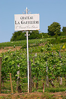 A white sign in the vineyard saying Chateau La Gaffeliere 1er premier grand cru classe Saint Emilion Bordeaux Gironde Aquitaine France