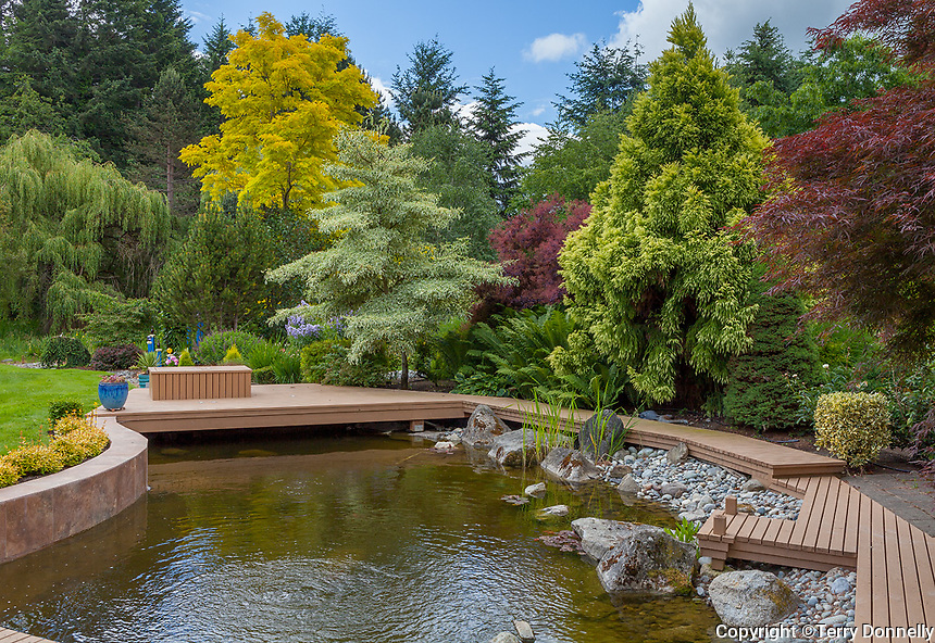 Vashon Island, WA: Pond with surrounding deck, Froggsong garden in summer