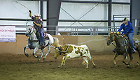 NWA Democrat-Gazette/BEN GOFF @NWABENGOFF<br /> Nathan Sorrell of Crane, Mo. competes Thursday, Aug. 8, 2019, during the team roping event during Benton County Fair in Bentonville.