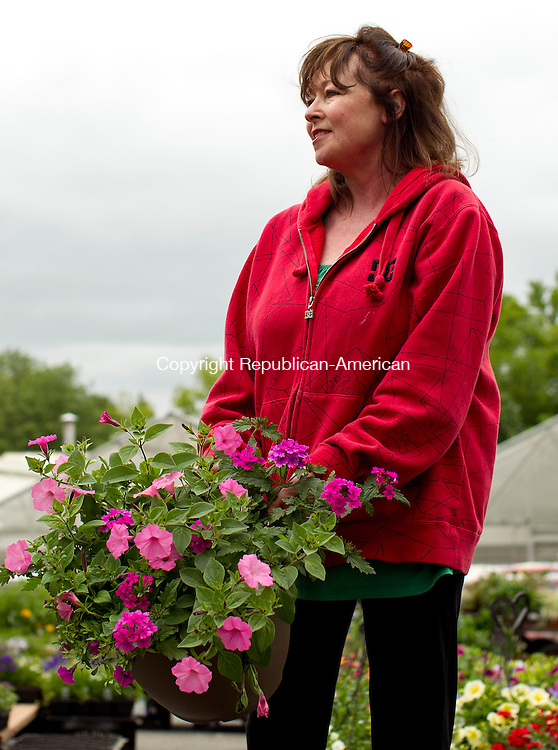 Cheshire, CT-19, May 2010-051910CM05  Beverly Arisco, of Arisco Farms, shows a hanging basket to a customer Wednesday afternoon at the farm stand in Cheshire.  Arsico Farm sells a variety of plants, flowers, and produce.  The farm grows all of it's plants in greenhouses onsite.  The farm opened Easter weekend, and will remain open to the until around Thanksgiving. The family owned farm has been around since 1968, and Beverly and her husband are the third generation family owners. --Christopher Massa Republican-American