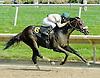 Avenue B winning at Delaware Park on 5/31/11