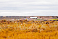 View over the vineyard and winery Bodega Familia Schroeder Winery, also called Saurus, Neuquen, Patagonia, Argentina, South America