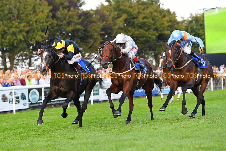 Winner of The British Stallion Studs EBF Stonehenge Stakes Mildenberger (m) ridden by Franny Norton and trained by Mark Johnston during Evening Racing at Salisbury Racecourse on 25th August 2017