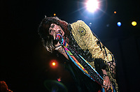 Aerosmith photographed in Chicago, Illinois November 24th,1982  <br /> CAP/MPI/GA<br /> &copy;GA//MPI/Capital Pictures