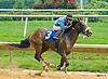 Lucas Long Step winning at Delaware Park on 8/1/16