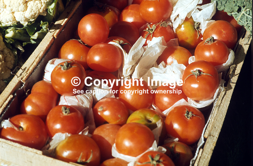 Tomatoes, display, greengrocer, Belfast, N Ireland, UK, 197602130125TD..Copyright Image from Victor Patterson, 54 Dorchester Park, Belfast, UK, BT9 6RJ..Tel: +44 28 9066 1296.Mob: +44 7802 353836.Voicemail +44 20 8816 7153.Skype: victorpattersonbelfast.Email: victorpatterson@me.com.Email: victorpatterson@ireland.com (back-up)..IMPORTANT: If you wish to use this image or any other of my images please go to www.victorpatterson.com and click on the Terms & Conditions. Then contact me by email or phone with the reference number(s) of the image(s) concerned.