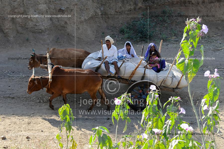 INDIA, Madhya Pradesh, Nimad region, Khargone , tribal farmer with bullock cart / INDIEN, Madhya Pradesh, Khargone, Adivasi farmer mit Ochsenkarren