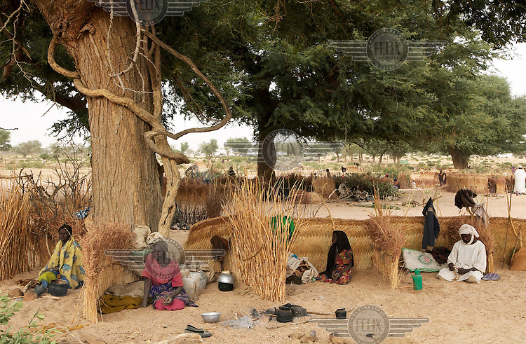 Sudanese refugees living in straw huts in a dry river bed in Eastern Chad. Thousands of refugees from Darfur province in Sudan have fled to Chad to escape attacks by Arab militias allied to the Sudanese government.