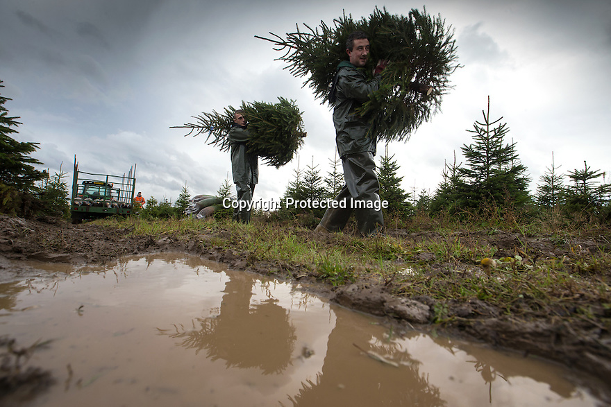21/11/16<br />