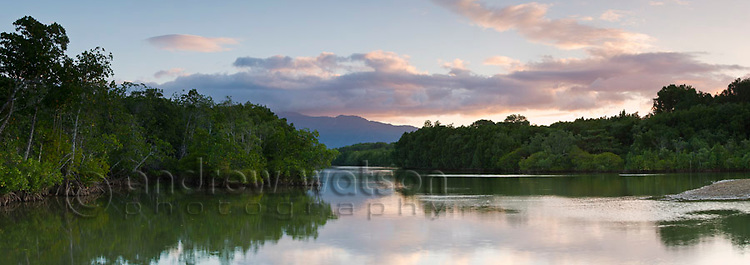 Mangrove lined estuary.  Machans Beach, Cairns, Queensland, Australia
