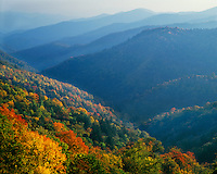 Fall color in the layered mountains at Newfound Gap; Great Smoky Mountains National Park, TN