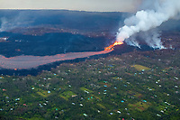 aerial view of lava originating from the east rift zone of Kilauea Volcano, erupting as fountains from fissure 8 in Leilani Estates subdivision, near Pahoa, sending a river of lava through the rural neighborhood toward Kapoho, Puna, Big Island, Hawaii, USA, the Pacific Ocean is visible at the top of the frame.