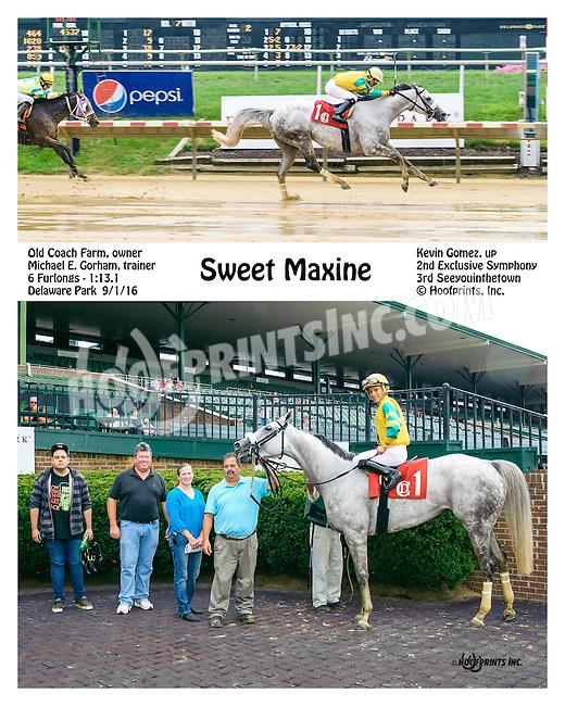 Sweet Maxine winning at Delaware Park on 9/1/16