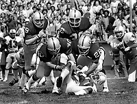 Oakland Raiders pile on Miami  Dolphins running back Mercury  Morris.Raiders....Bob Hudson, Pete Banaszak, Clarence Davis and Steve Sweeney....The Raiders snapped the Miami Dolphins winning streak of 18 in a row. Game played at University of California in Berkeley, Cal (1973 photo by Ron Riesterer)