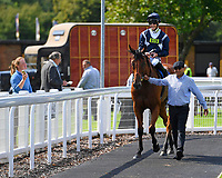 Winner of The First Carlton Fillies' Handicap, Raincall ridden by Harry Bentley and trained by Henry Candy is led into the Winners enclosure  during Horse Racing at Salisbury Racecourse on 15th August 2019