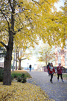 Student pedestrians with fall leaves<br />