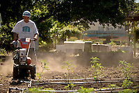 Marcus Corey operates a rototiller on a bare section of soil to prepare it for planting at the Social Advocates for Youth Sunflower Community Garden in Santa Rosa, Calif., on May 14, 2013. (Photo by Alvin Jornada)