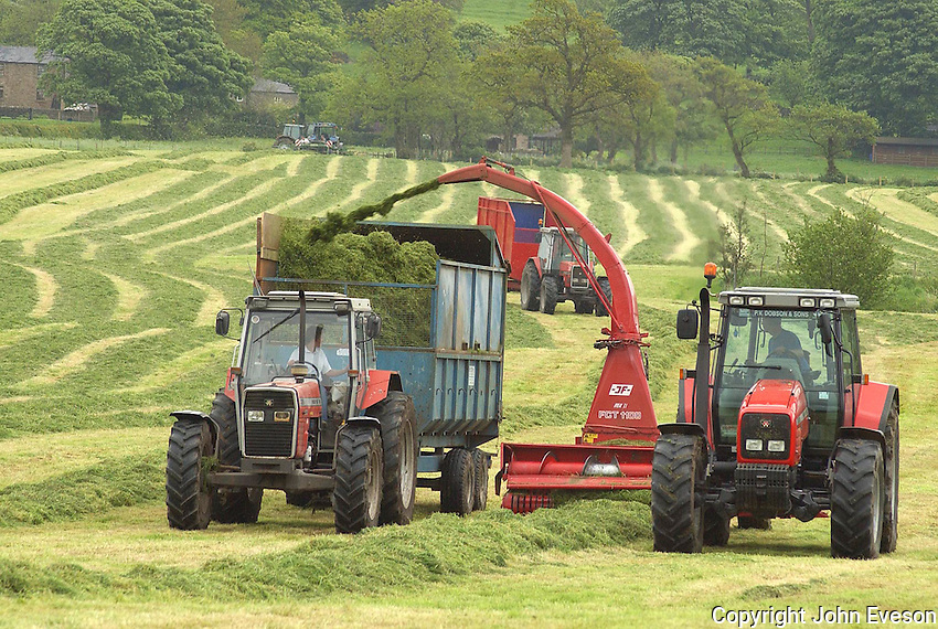 Contractors Catterall and Forest forage harvesting 160 acres of first cut silage on Mathew Forshaw's Little Town Farm, Thornley with Wheatley, Longridge, Lancashire. Milk from the 160 Holstein milkers is used to produce yoghurt under the Little Town Dairy name.