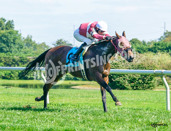 Mast Cove winning at Delaware Park on 10/5/16