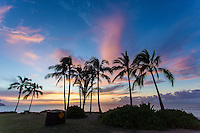 Colorful sunset with silhouetted coconut palm trees on the beach in Haleiwa, North Shore, O'ahu