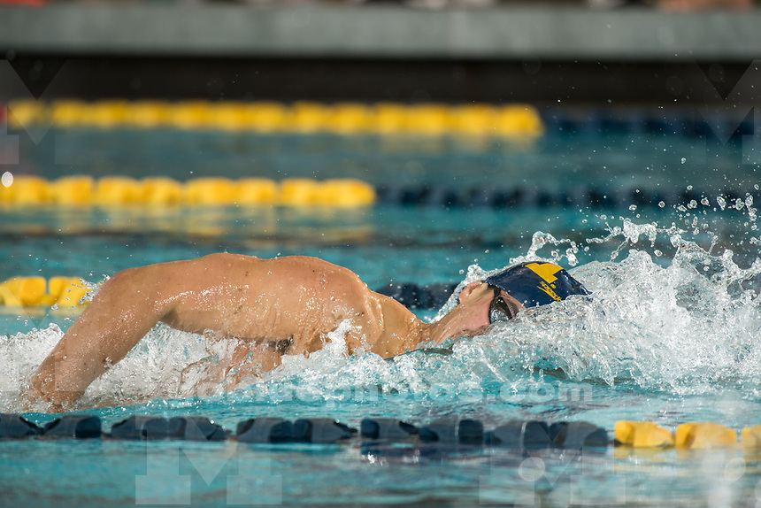 9/17/17 The University of Michigan men's and women's swimming and diving team defeats Oakland at Canham Natatorium in Ann Arbor, MI on September 29, 2017.