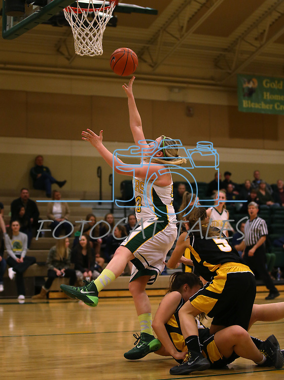 Manogue's Madison Lewis shoots against Galena at Manogue High School in Reno, Nev., on Tuesday, Feb. 11, 2014. Manogue won 51-29.<br /> Photo by Cathleen Allison