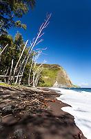 Black sand beach, Waipio Valley, Big Island, Hawaii