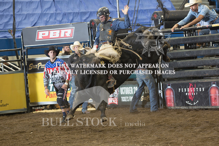 J.T. Moore attempts to ride Drifter ( Mike Miller/Torres Bros ) during the first round of the PBR Real Time Pain Relief Velocity Tour event in Hartford, CT - Photo by Andre Silva