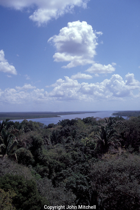 View of the New river lagoon from the Mayan ruins of Lamanai, Belize